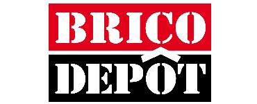 Brico Depot Black Friday 2020 Online Catalog